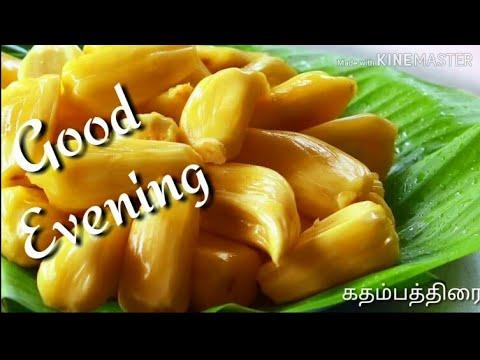 Good evening messages - Good Evening Whatsapp Status Video Hd