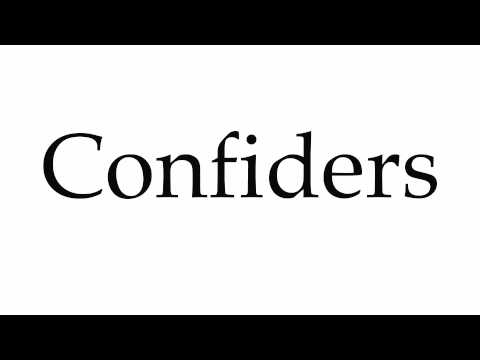 How to Pronounce Confiders