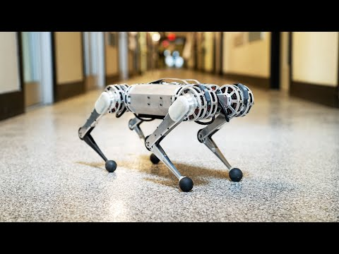 Mini Cheetah, robotdog, Massachusetts Institute of Technology