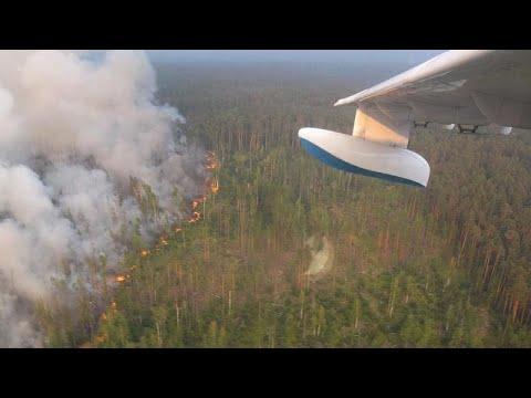 GREENPEACE: «Οι φωτιές στη Σιβηρία δεν θα σβήσουν εντός του Αυγούστου»…