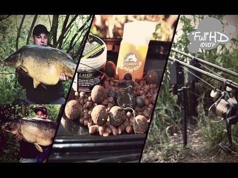carp mysterious PF 2017