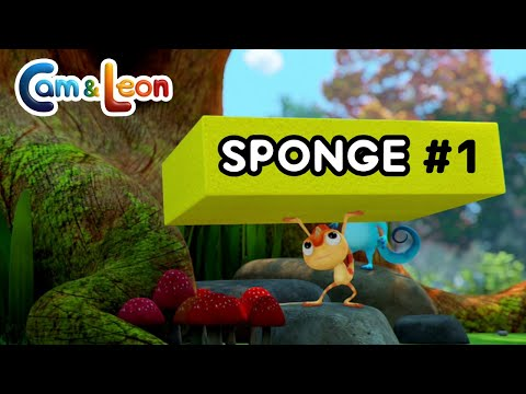 Hilarious Children Cartoon | Sponge #1 | Cam & Leon