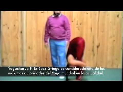 Curso de Yoga video 2 con Yogacharya Estevez Griego (Maitreyananda)  Purna Yoga ®