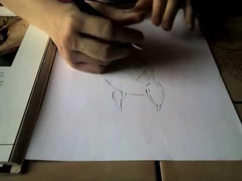 Pferd malen in 7 minuten