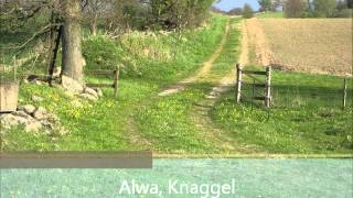 Download Lagu Alwa, Knaggel Mp3