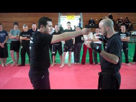 Roy Elghanayan's Krav Maga Seminar in Rome, Italy March 20th 2011