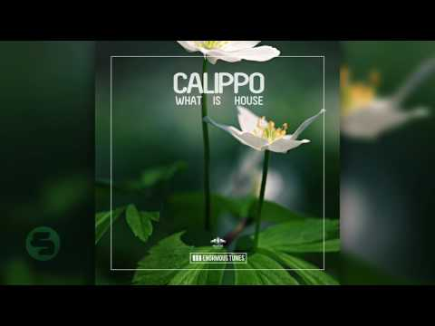 Calippo - What Is House