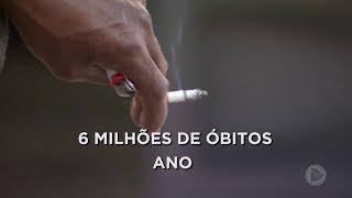 Consumo de tabaco cai 40% no país nos últimos 13 anos