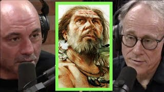 Video Joe Rogan | The Strange History of the Denisovans w/Graham Hancock MP3, 3GP, MP4, WEBM, AVI, FLV Juli 2019