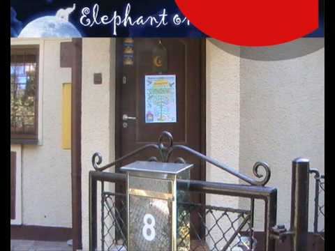 Video avElephant on the Moon Eco Hostel