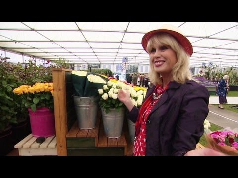 That - At the Chelsea Flower Show, actress Joanna Lumley demonstrates how roses are grown in Kenya using recycled water.