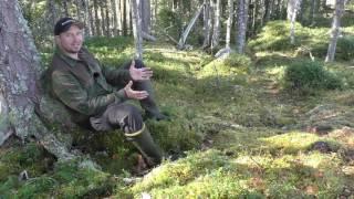 Kort beskrivning av gömsleområdet vid Finsk-Ryska gränszonen