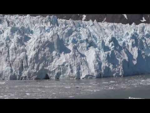 More Glacier Bay Alaska from Cruise Ship