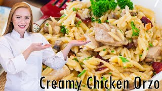 Creamy Chicken Orzo With Cranberry & Pecans by Tatyana's Everyday Food