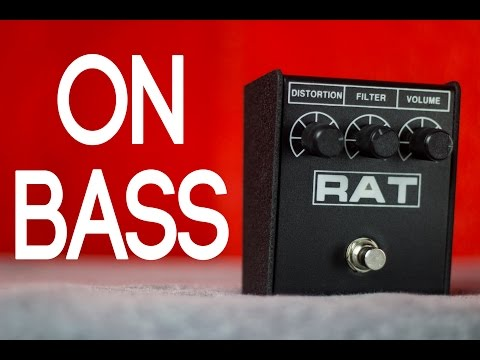 ProCo Rat2 [Bass Demo]