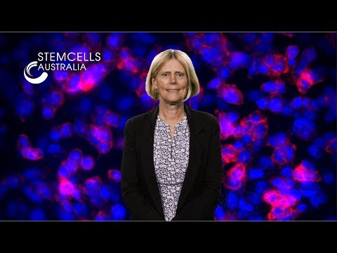 Welcome to Stem Cells Australia