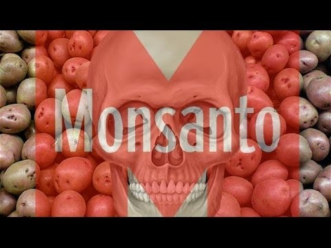 HAWAII BANS GMO FOOD & CROPS – Anti GMO / Monsanto Spreading Across The World