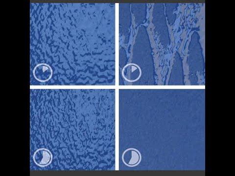 StoColor Dryonic Fassadenfarbe - FIRA®