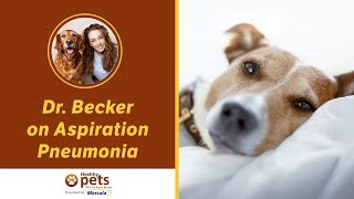 Dr. Becker on Aspiration Pneumonia