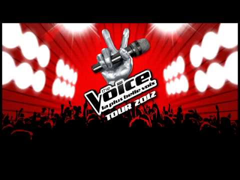 The voice - Le monde est stone