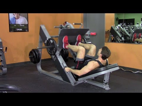 Beginner Weight Training in the Gym – HASfit Beginner Strength Training Easy Workout Exercises