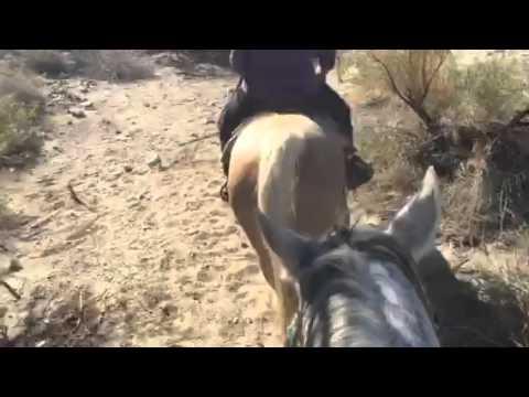 Palm Springs Horseback Ride at Smoketree Ranch