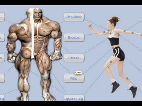 SEXY Android Workout App! – Jefit Review Bodybuilding, Weight Training, Fitness – AppJudgment