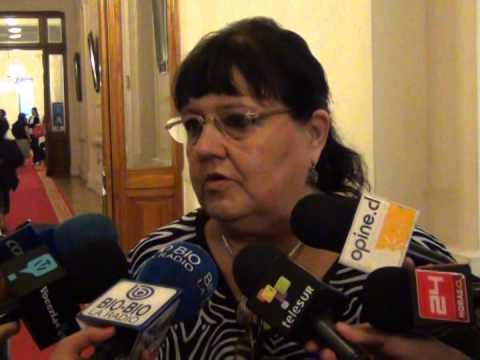 Presidenta del Colegio de Matronas llamó a legislar sobre aborto