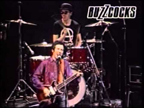 Live Music Show - Buzzcocks, 1981
