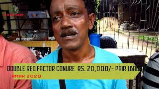 EXOTIC BIRD SELLER OF GALIFF STREET MARKET KOLKATA INDIA | 29 TH JULY 2018 VISIT