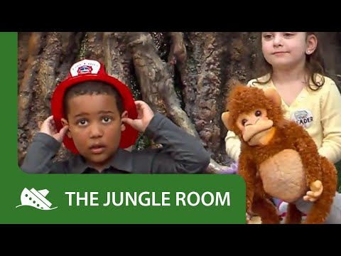 The Jungle Room | Season 1 | Episode 3 | Spills 'n Thrills And Fire Drills | Megan Widmer