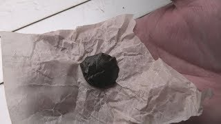 Montreal Bubble Rosin Hash Wednesday by Urban Grower
