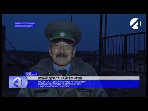 Об уничтожении в Астраханской области санкционной продукции