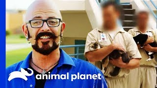 Animal Program Saves Hundreds Of Lives In This Prison | My Cat From Hell by Animal Planet