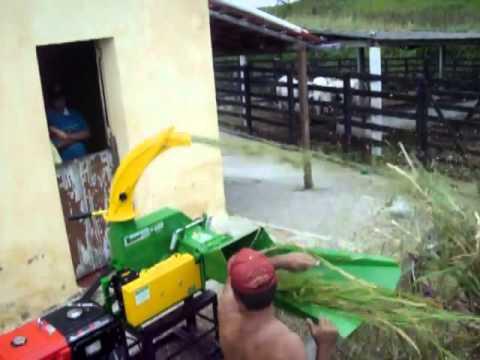 ensiladeira - Acesse e conheça a linha Trapp: http://www.brasutil.com/marca/Trapp A Trapp é líder de mercado, produzindo uma ampla gama de produtos: cortadores de grama ma...