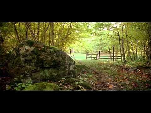 Naturreservat Film04