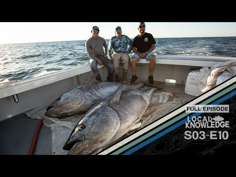 Cape Cod Harpooning Giant Bluefin Tuna - S03 E10 The Cape
