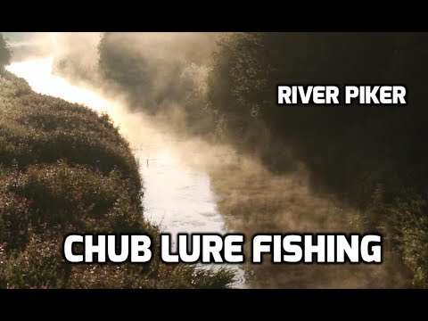 Lure fishing- Sight fishing for chub - (video 187) (видео)