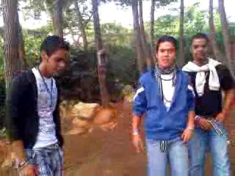 """Fe y Alegria 3ero de Informatica B """"Los Backtrees boys"""""""