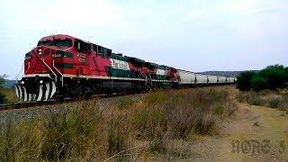 Que hay raza aquí les dejo un vídeo de un tren de Ferromex rumbo al Sur en esta ocasión la locomotora líder fue la 4559 una AC4400CW y en múltiple venía la 4529 otra AC4400CW esta Mancuerna de AC4400CW las grabe pasando por las Curvas de San Bartolo (Hacienda de San Bartolo, Jalisco) hace ya algunos años por esta zona de Curvas de la A se descarrilo un tren, bueno este tren lo logre captar en el Kilómetro # 442 de la Línea A del Distrito de León en el Municipio de San Bartolo, Jalisco. México NOAS_5FerroNoas NOAStudioPhotos
