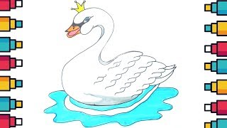 How to Draw Swan in Water for Kids