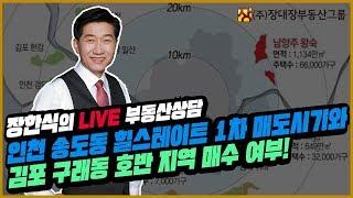 [부동산투자상담] 인천 송도동 힐스테이트 매도시기와 김포 구례동 호반지역 매수 여부!