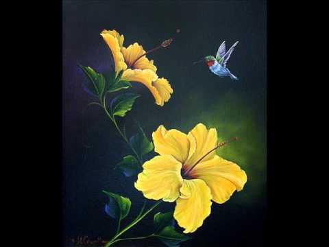 Video Flores I y II ©Alexander Cruz