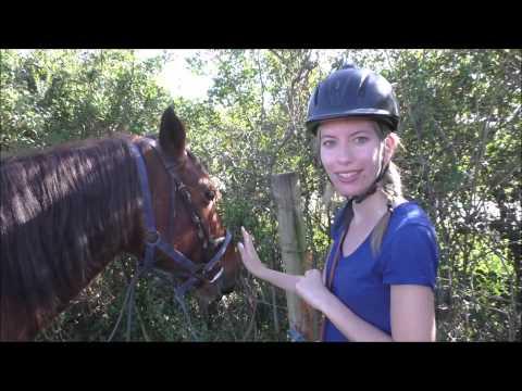 VIDEO: Horseback Riding in Chintsa