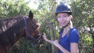 Cintsa South Africa  city pictures gallery : Horseback Riding in Chintsa, South Africa