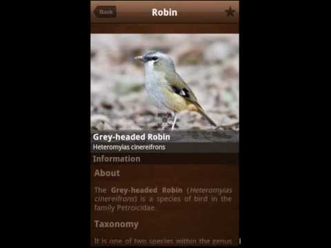 Video of Bird Calls 4500+ Songs & Sound
