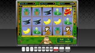 Бизнес План Интернет Игровых Автоматов