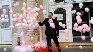 Party tovar - videa