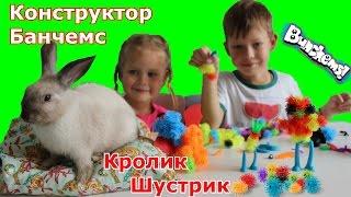 БАНЧЕМС Конструктор вместе с КРОЛИКОМ Шустриком