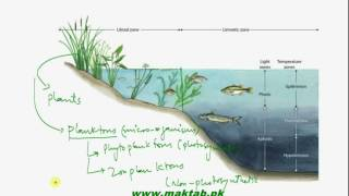 This video lecture from Some Major Ecosystems (F.Sc. second year Biology) covers information about freshwater lake ecosystem including different life zones and details about intervention of man in aquatic ecosystem. Find more e-learning material and educational video lectures in Urdu at maktab.pk. These videos are free to use for promotional and commercial purpose by keeping the credits to Maktab.